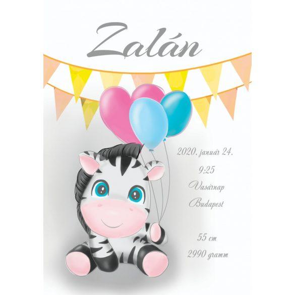 ÚJSZÜLÖTT BABAPOSZTER - Zebra